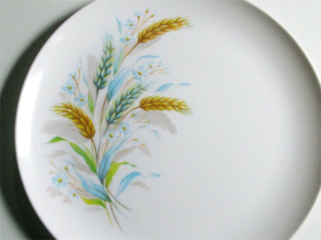 Of Melamine and Mellorine: Gifts from My Mother